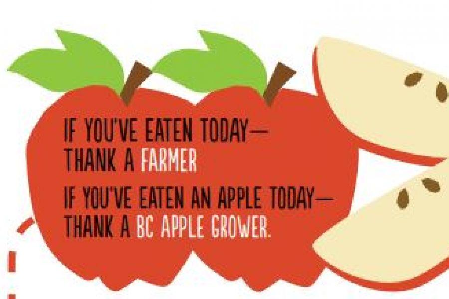 Fresh Story Apples